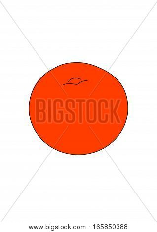 The red round tomato on a white background.