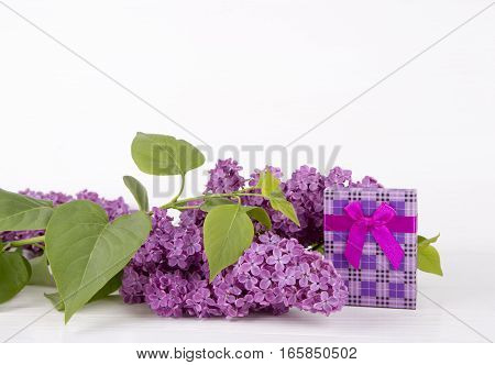 Bouquet Of Lilac With Purple Gift Box On White Background