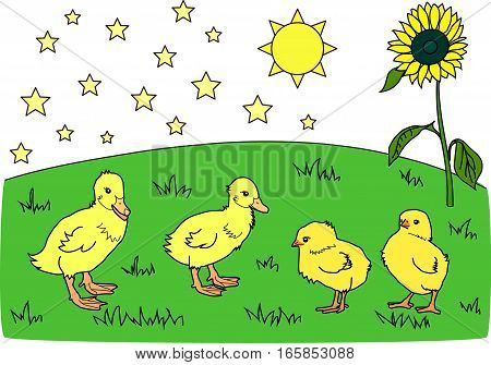 The yellow sun, stars, sunflower, ducklings, chickens on the green meadow.