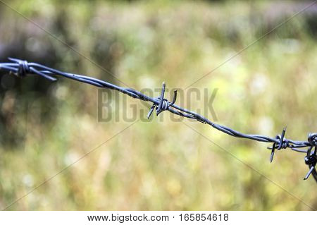 close-up of barbed wire with blurry background