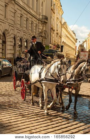 Horsecarriage and very blue sky with cloud in vienna, austria 2015