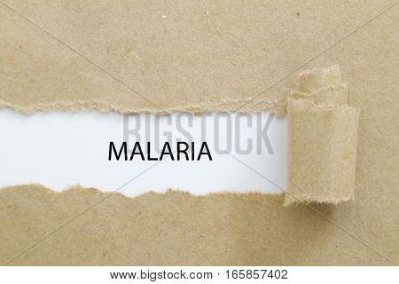 MALARIA word written under torn paper .