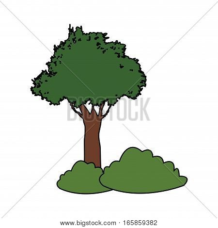 green tree icon over white background. colorful design. vector illustration