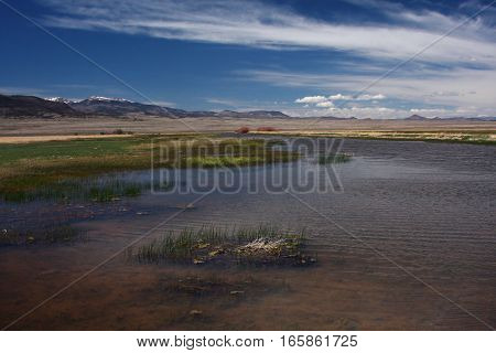 A beautiful spring day at the Alamosa Wetlands in southern Colorado in the San Luis Valley.