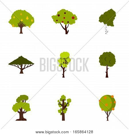 Types of trees icons set. Flat illustration of 9 types of trees vector icons for web
