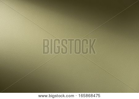 Tan Leather Swatch