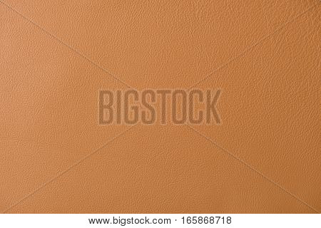 Light Brown Leather Swatch Section