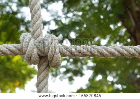 Rope knot line tied together with nature background,as a symbol for trust, teamwork or collaboration.