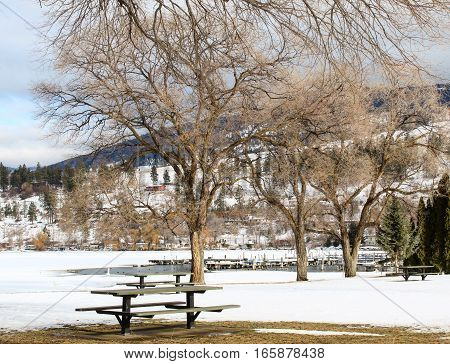 Winter landscape with trees and picnic tables on snow covered field in foreground.  Frozen lake with open water,dock and ducks in water.Snow covered lake,cottages, forest,sky and hills in background.