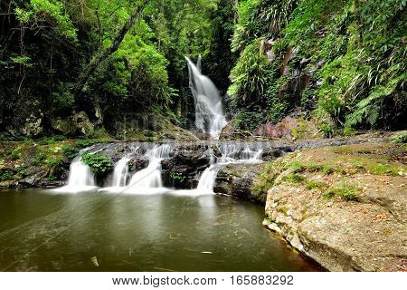 Elabana Falls is surrounded by lush rainforest and is found in Lamington National Park, Gold Coast, Queensland, Australia.