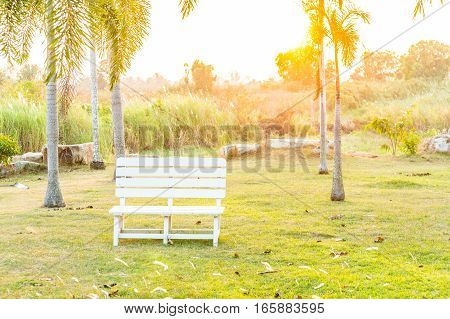 white chair in the park with sunset