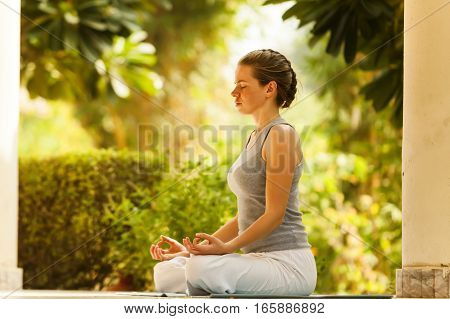 yoga girl in the summer park pose tree