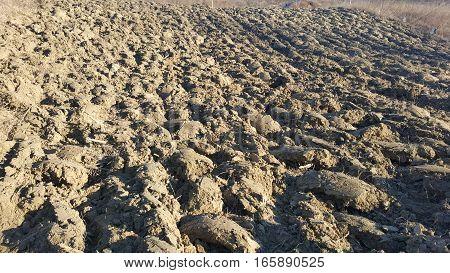 Soil / sand texture background. Soil landscape