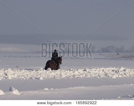 The equestrian on a horse jumps on winter fields