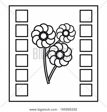 Camera film icon. Outline illustration of camera film vector icon for web