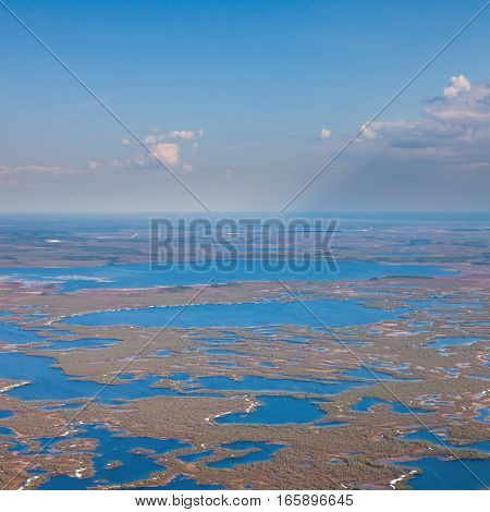 Aerial view of endless marshes in spring