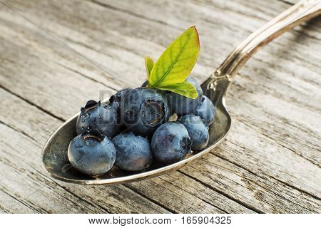 Fresh blueberries with green leaves on spoon