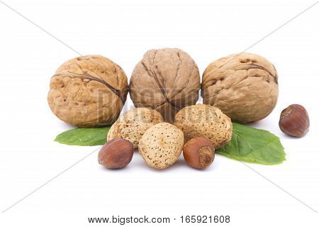 Closeup of Walnuts, almonds and hazelnuts isolated on white background.