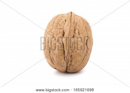 Closeup of a walnut isolated on the white background.