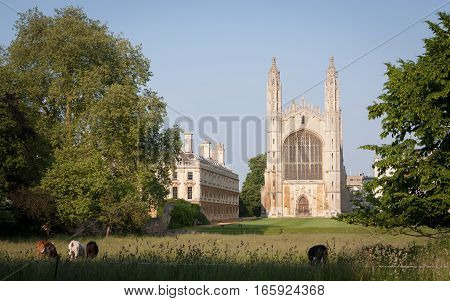 A dusk view across the rural setting of the chapel of Kings College Cambridge University.