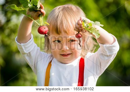 Little child holding in hands big and small radishes and comparing by sight - outdoor in vegetable garden