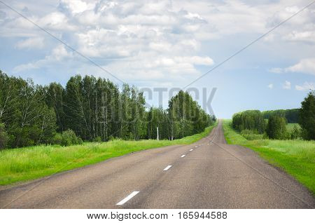 Asphalt Road In The Field And Forest