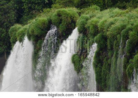 Waterfall in the jungle - brautiful view