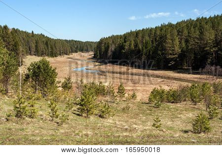 Forest and winding forest river in early spring. In the photo - river Shaytanka, Russia, Ural, Sverdlovsk region.
