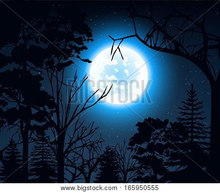 Stock vector illustration of night landscape with starry sky and full moon on a background of silhouettes of trees