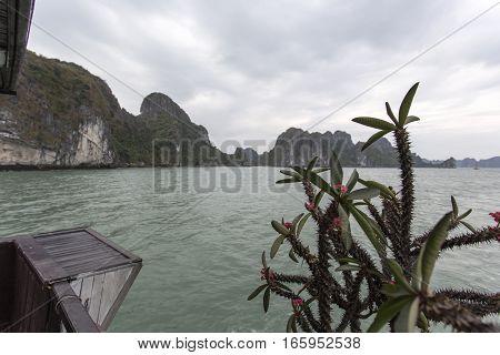 sea landscape from boat. Ha Long Bay Vietnam