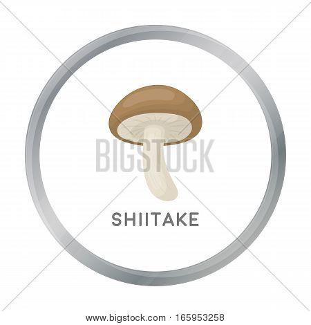 Shiitake icon in cartoon style isolated on white background. Mushroom symbol vector illustration.
