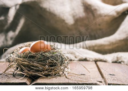 Uncooked chicken eggs in natural birds nest