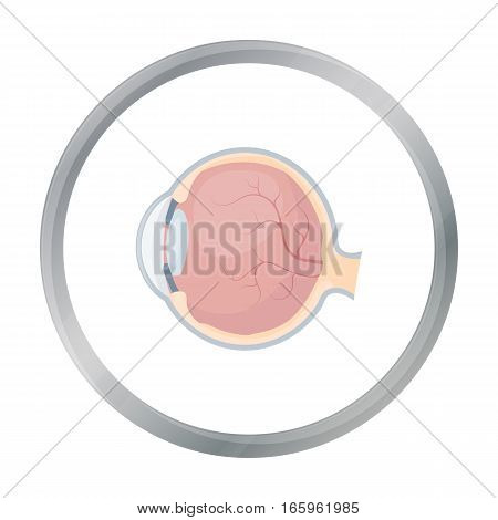 Eyeball icon in cartoon style isolated on white background. Organs symbol vector illustration.