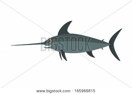 Swordfish vector, Isolated on white background, illustration for the children