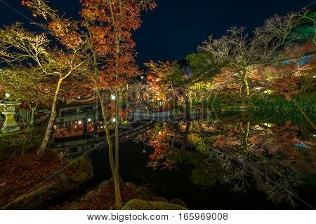 The Eikando temple night illumination during the month of November