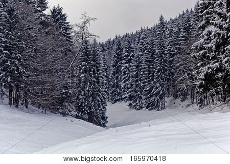 Winter landscapes in the Thuringian mountains in central Germany.