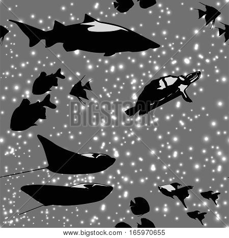Seamless pattern with beautiful fishes like in space among the stars in black and white colors, vector illustration