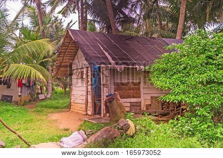 The old fishing hut at the ocean's shore surrounded by palms and greenery Hikkaduwa Sri Lanka.