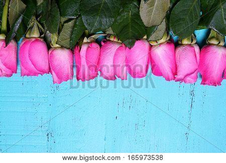 Vintage Aqua Blue Wood Background With Pink Rose Buds.