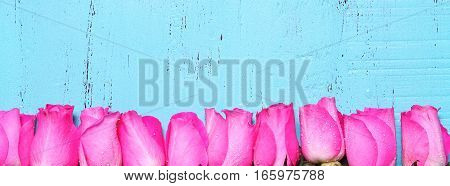 Aqua Blue Wood Background With Pink Rose Buds Social Media Web Banner