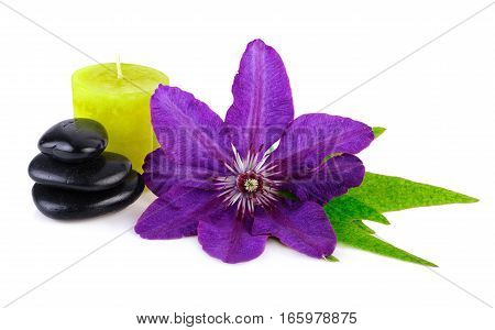Bright Flower with Spa Stones and Green Candle on White
