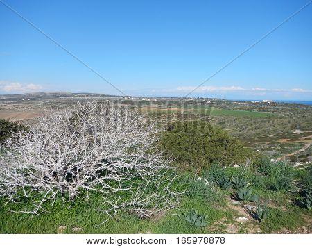 View To Agia Napa From Cavo Greko