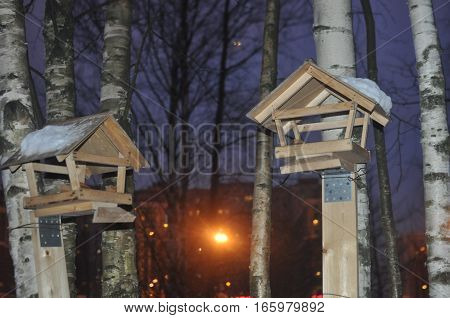Two wooden birdhouse for birds on a tree