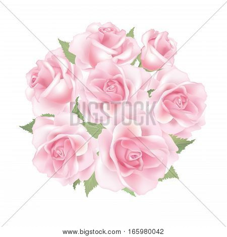 Flower rose pink bouquet isolated on white background
