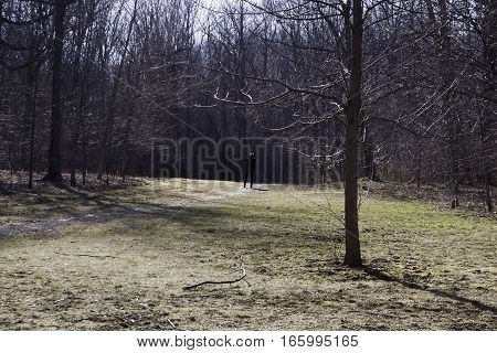 Ville Lasalle, Quebec, April 13, 2016 -- A lone photographer stands out among the bare trees and landscape in Angringnon Park, Lasalle, Quebec, on a bright sunny day at the beginning of April.