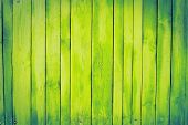 green, yellow old wooden fence. wood palisade background. planks texture. greenery poster