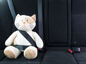 Plush toy cat fastened with seatbelt in the back seat of a car, safety on the road. Protection concept poster
