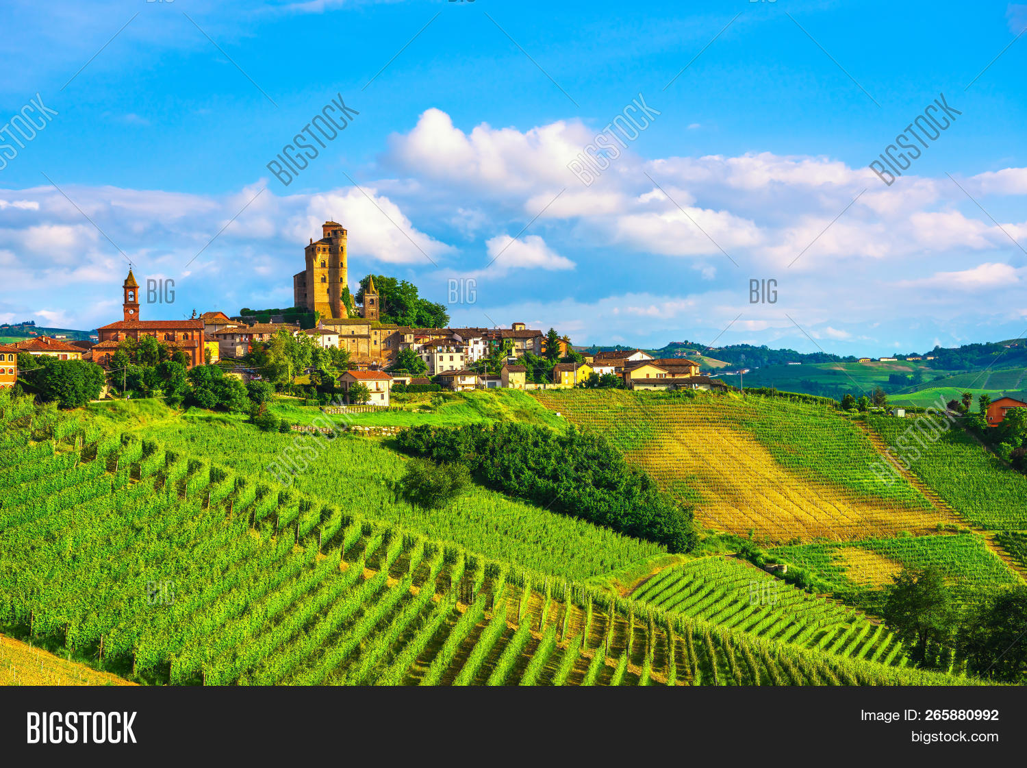 Langhe Vineyards Image & Photo (Free Trial) | Bigstock