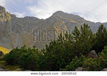 Placlive Peak in the Western Tatras (Rohace), valley view poster