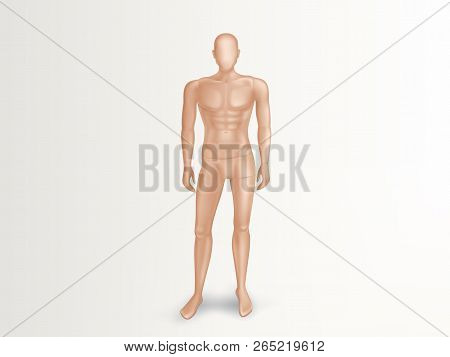 Vector 3d illustration of male mannequin, naked full body of man. Faceless human figure with muscles for sport training. Nude plastic dummy, fashion manikin for showcase of boutique, clothing store poster